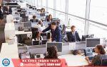 Ăn gì chữa khó đi ngoài ở dân văn phòng ?