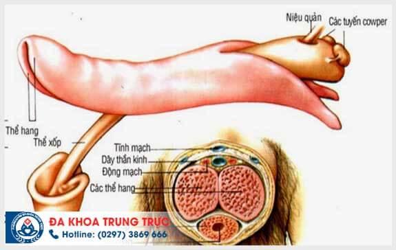 dieu tri xuat tinh som bang phuong phap nao