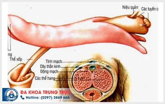 dieu tri yeu sinh ly bang phuong phap nao