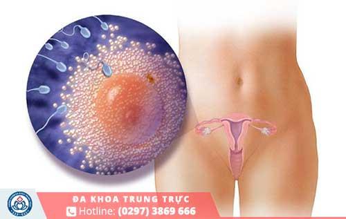 Việc nhận biết mang thai cần phải dựa vào Hormone HCG trong cơ thể chị em