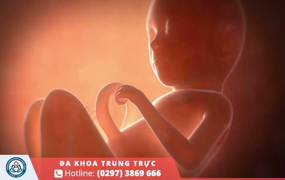 Phá thai 2 tháng tuổi bao nhiêu tiền